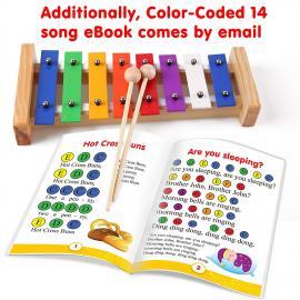 Toy Glockenspiel for Children 8 Colored Keys