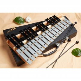 Glockenspiel 25 Note Chromatic C-C Tuned, Carrying Case, 4 Mallets, Sheet Music Cards